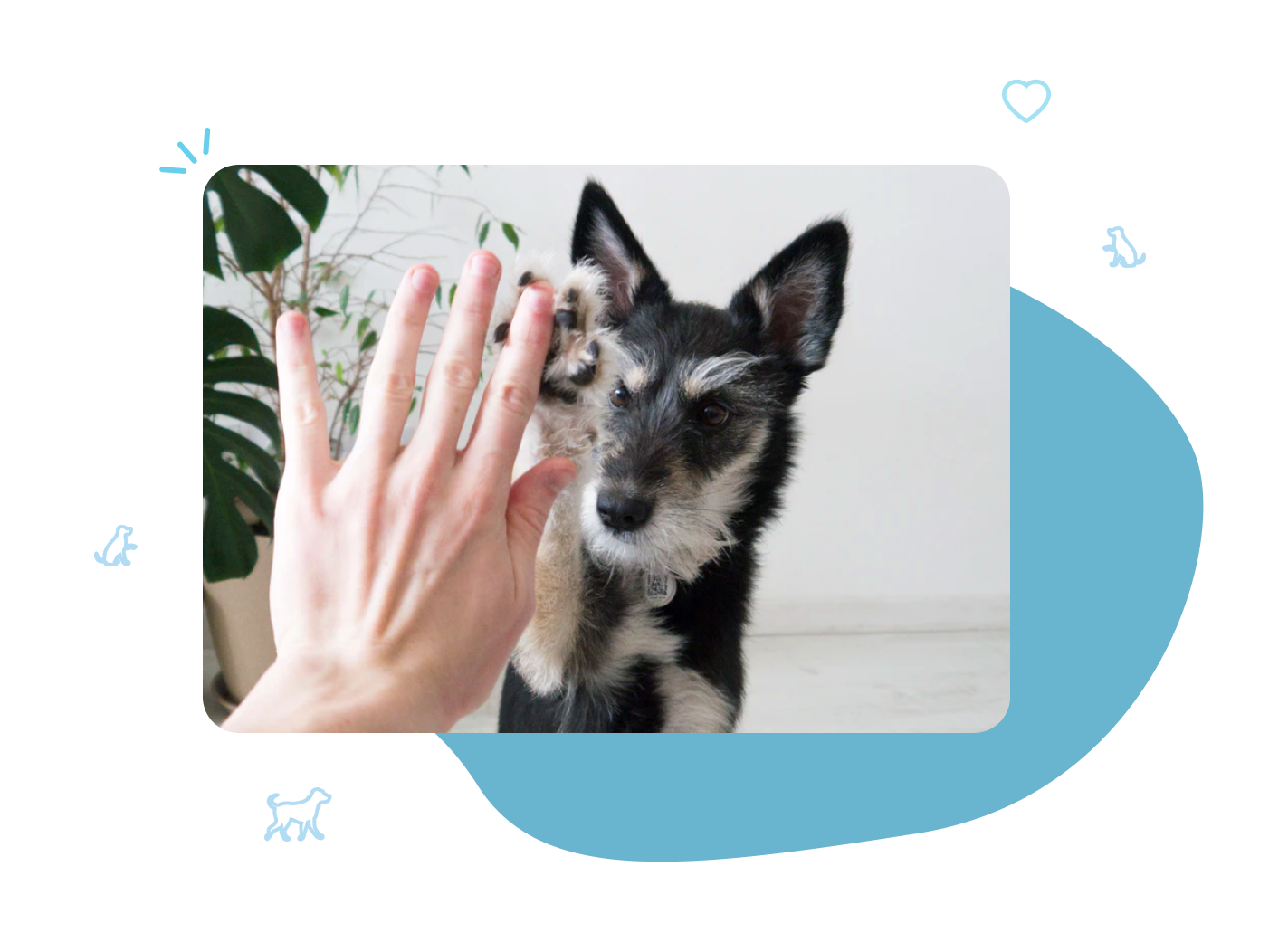 GoodPup's mission is to build better relationships between dogs and dog parents through better dog training.
