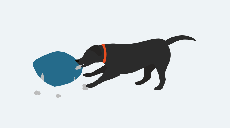 Learn how to train your dog to Biting & Chewing with GoodPup.